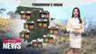 [Weather] Dry weather continues
