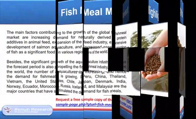 Fish Meal Market and Volume, Global Forecast by species & End-User