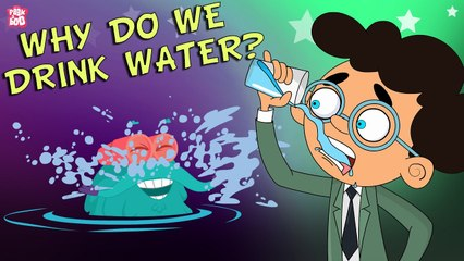 Why Do We Drink Water?   Importance Of Water   Stay Hydrated   The Dr Binocs Show   Peekaboo Kidz