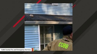 Firefighters Rescue Nervous Cat Stuck On Roof