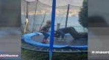 Coronavirus - Choupo en vélo, Icardi sur le trampoline : comment les joueurs du PSG vivent leur confinement...