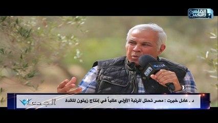 د.عادل خيرت: مصر تحتل المرتية الأولى عالميا في إنتاج زيتون المائدة