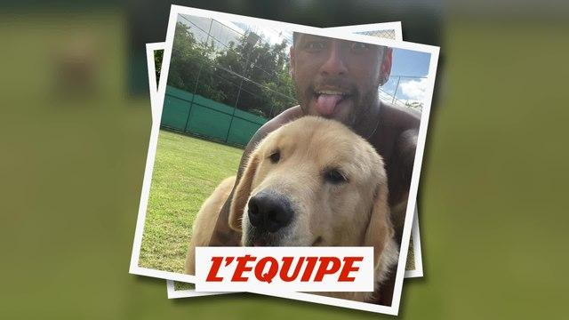 Neymar s'entraîne avec ses chiens - Foot - WTF