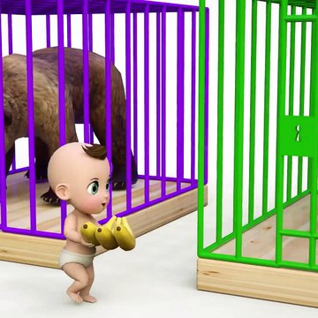 Baby and Wrong Animals for Kids