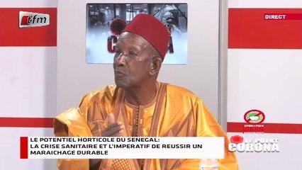 Edition Spéciale : Le potentiel horticole du Sénégal