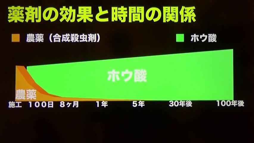知らないと後悔する恐ろしい日本の防腐防蟻処理の現実(世界は安全なホウ酸なのに)