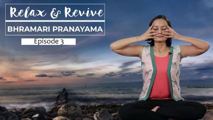 Bhramari Pranayama for Relaxation   Meditation For Beginners   Relax & Revive   S01E03