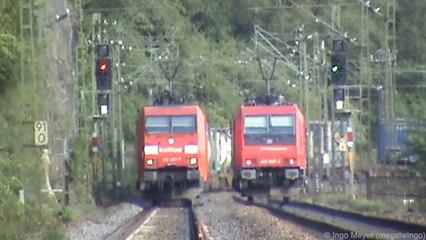 Züge bei der Loreley am Rhein, Class 66, SBB Cargo Re482, 152, 185, 101, ICE-T, 427, 4x 428, 143