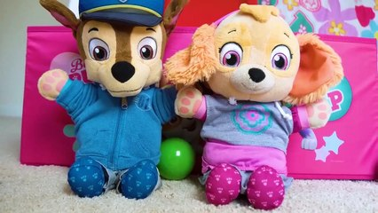 Paw Patrol's Skye and Chase's fun day at the Playground and No Bullying