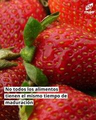 Guía para conservar frutas y verduras en casa