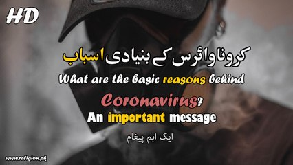 Coronavirus in Urdu HD - What are the basic reasons behind COVID-19? An important message about Corona Virus