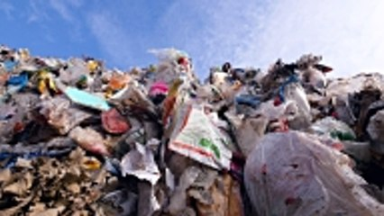 4 résolutions écologiques à prendre pour la planète