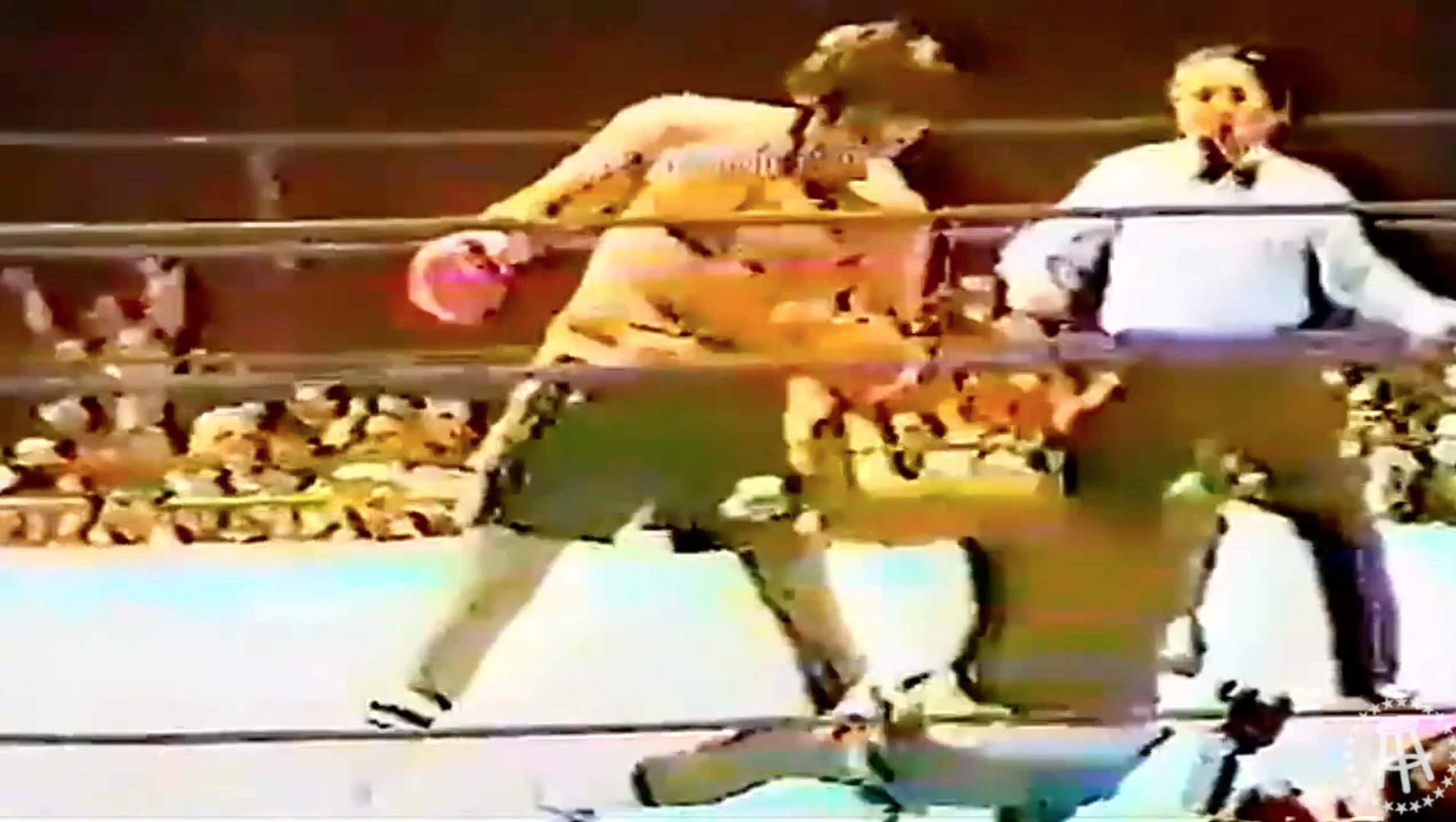 Heavyweight Gerry Cooney Highlight Remix