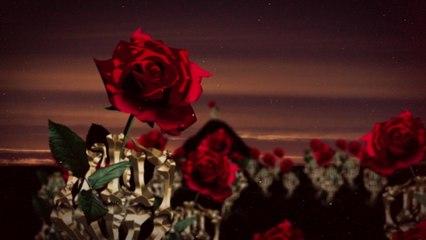 4Ternity - Rose Park