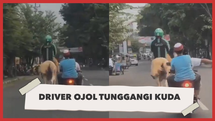 Kocak, Aksi Driver Ojol Tunggangi Kuda