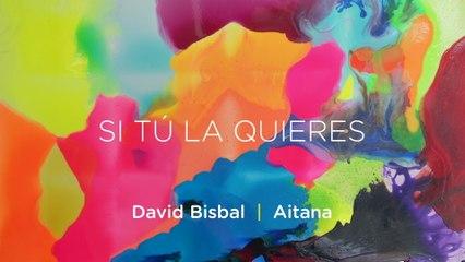 David Bisbal - Si Tú La Quieres