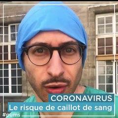 COVID 19 en réanimation - Dr Benjamin CHOUSTERMAN