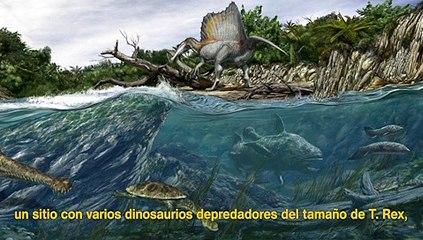 Así era el spinosaurus, el dinosaurio carnívoro más grande del mundo