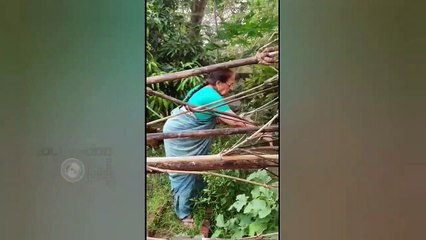 Archana Puran Singh With Her Mom Enjoy Organic Vegetables, Shares Glimpse From Their Bungalow