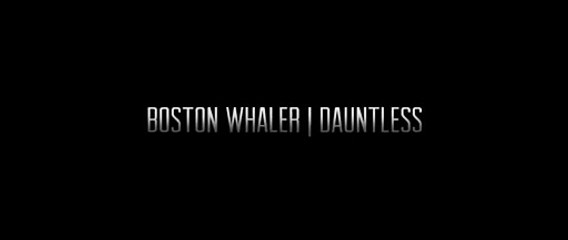 Boston Whaler: Dauntless Family