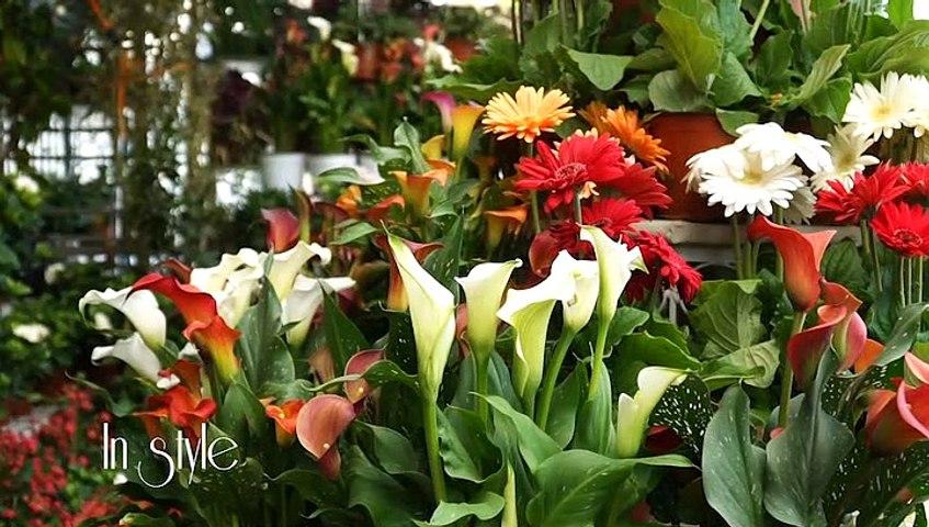 In Style The Garden Store, Νέλη Μυλωνά - Κλινική Διαιτολόγος, Αναστασία Ευαγγελοπούλου - Δ/ντρια 3 δημοτικού Σχολείου Λαμίας