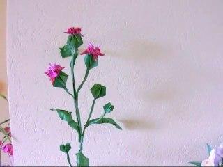 Origami Thistle Plant
