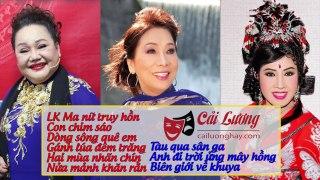 Cai Luong VietNhững Trích Đoạn Cải Lương