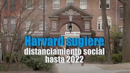 Harvard sugiere que distanciamiento social se mantenga hasta 2022
