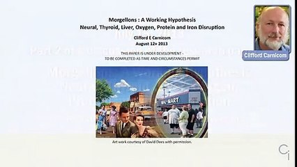 Morgellons-A_Working_Hypothesis-Web_Conference-Part_2a