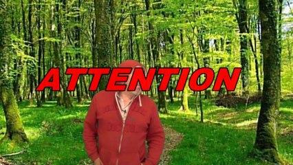 Attention en forêt ou dans la nature !!