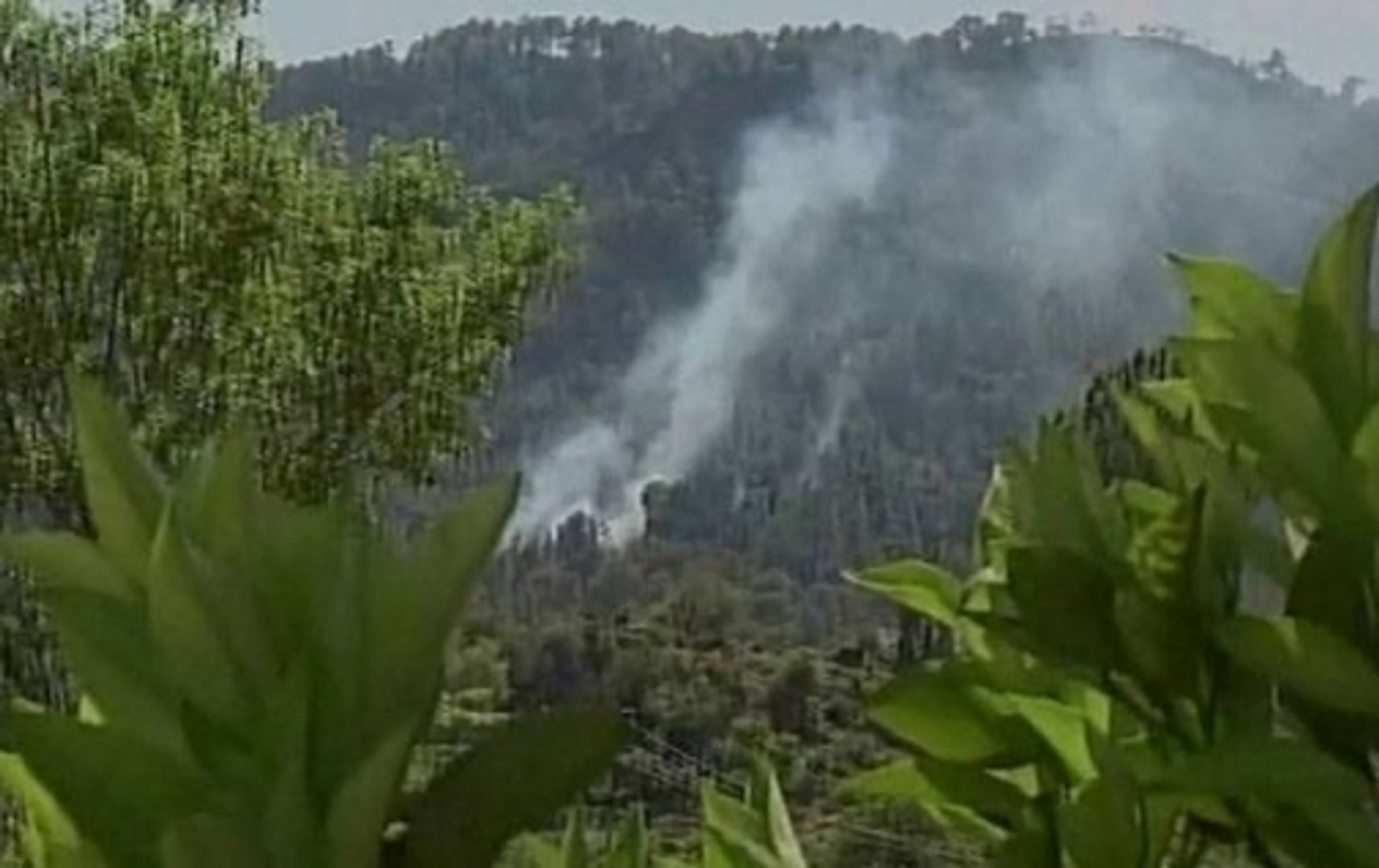Speed News: Pakistan violates ceasefire along LoC in Nowshera, Krishna Ghati