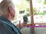 Le zoo de Saint-Martin-la-Plaine a rouvert ! -  Reportage TL7 - TL7, Télévision loire 7