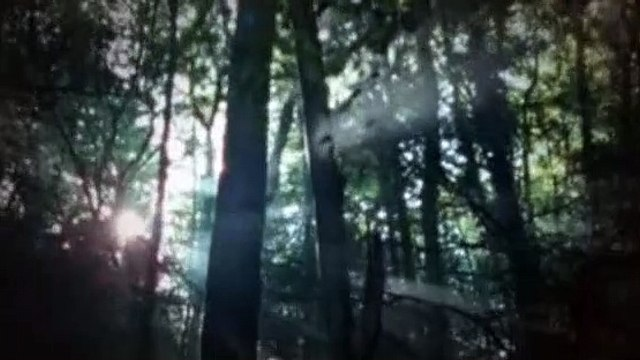 Merlin 01x11 The Labyrinth Of Gedref