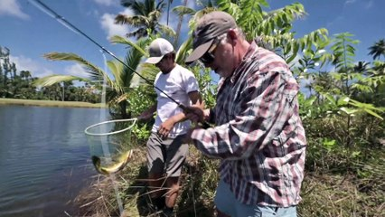 A D.I.Y. Fishing Road Trip in Puerto Rico