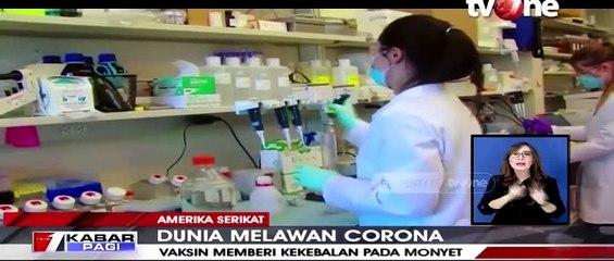 Uji vaksin Corona ke Seekor Monyet Menunjukan Hasil