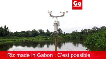 Production du riz au Gabon