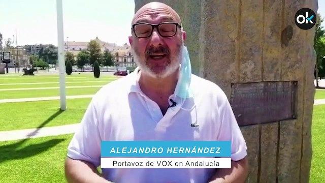 Alejandro Hernández, portavoz de VOX en Andalucía.