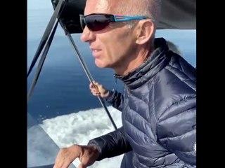 Une rencontre avec des dauphins et un rorqual au large du Golfe de Saint Tropez