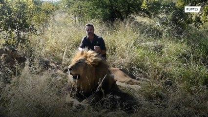 A versão do Tiger King da África do Sul, o Encantador de leões, está com dificuldades financeiras