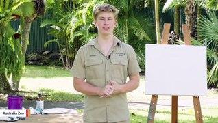 Robert Irwin Reveals He's A Painter