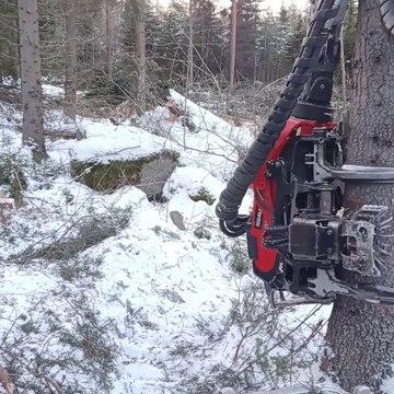 Beautiful Onboard Footage of Harvester in Snowy Forest | Komatsu 901xc | C93 Harvester Head