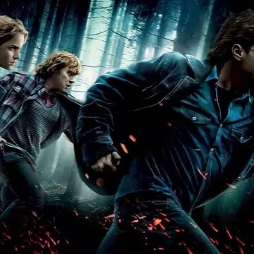 Harry Potter Great Compilation - Part 4: The Deathly Hallows