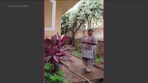 Archana Puran Singh's Maid Bhagyashri Finds Out She Has Become Famous