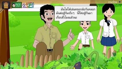 สื่อการเรียนการสอน อ่านในใจบทเรียนเรื่อง ชีวิตที่ถูกเมินป.4ภาษาไทย