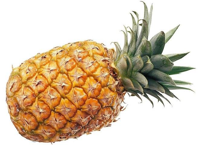 Vos Questions Jardin: Comment planter un ananas