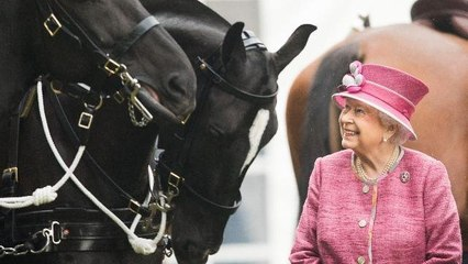 علاقة الملكة إليزابيث بالأحصنة: قصّة صداقة طويلة وشغف كبير