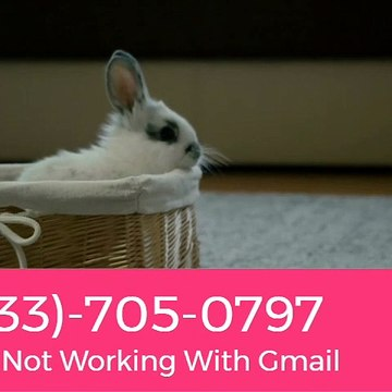 Outlook Not Working With Gmail +1-(833)-705-0797