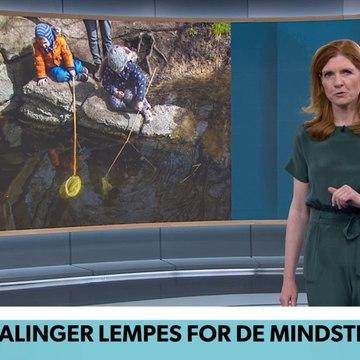 COVID-19; Anbefalinger lempes for de mindste | TV Avisen | DRTV @ Danmarks Radio