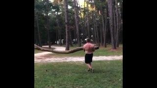 2 bûcherons idiots essayent de casser un tronc contre un arbre