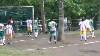 Un terrain de foot avec des arbres en plein milieu
